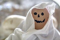 DOLCETTO, IL FANTASMETTO. (FRANCO600D) Tags: halloween macromondays hmm fantasma dummyortrick uovo telo canon spavento horror eos600d franco600d