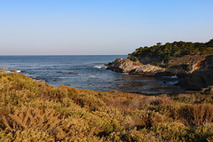 Point Lobos State Natural Reserve (dremle) Tags: california ca pacificcoasthighway pacificcoast pacificocean ocean