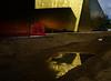 L'or de la Bièvre - (5/5) -  Mirage ou prémonition 2024? (renécarrère) Tags: gymnase antony complexesportiflafontaine