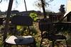 3 (Mandala Azul Fotografías) Tags: sesion canon t5i fotografia photograp udechile universidaddechile facultaddeagronomia agronomia incendio photographer fotografo santiago chile