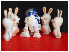 les maîtres du monde ,drôle de rencontre . erreur de Casting . (LUDOVIC. R) Tags: normal qualitésupérieure lapin crétin
