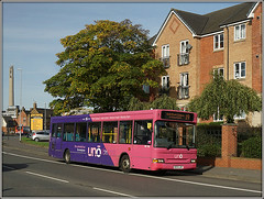 Uno 115, Westbridge (Jason 87030) Tags: 115 dart tramp beggar westham westbridge northampton town stjamesroad northants northamptonshire uon university bus everyone pink purple transbus dennis slf pointer 19 campus roadside sony ilce alpha a6000 nex lens tag flickr color colour publictransport wheels sunny october session 2017 ke53lmy