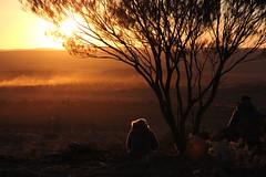 Sunset at the Living Desert Reserve (cathm2) Tags: australia nsw brokenhill outback travel roadtrip livingdesert evening sunset light