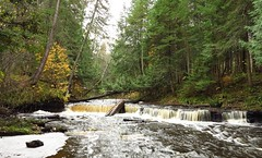 IMG_4301 (2) Haymeadow Creek panorama (jgagnon63@yahoo.com) Tags: october haymeadowfalls haymeadowcreek stream waterfall creek water forest trees autumn fall canong1x panorama hiawathanationalforest nationalforest deltacountymi uppermichigan michigan upperpeninsula upperpeninsulawaterfalls publicland thislandisyourland river