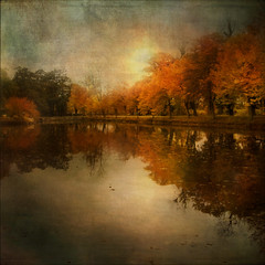 Last week of October (BirgittaSjostedt) Tags: autumn reflections fall paint house water texture landscape row tree scene