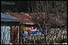 peaceful & tranquil Harshil Village... (bohemian_hearttanu) Tags: himalayas photography india hamlet peaceful landscape people habitats mountains uttarakhand traveldiary travelling explore waiting winter autumn hut trees apple orchard