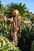 Pumpkin Man (littlestschnauzer) Tags: halloween hallows eve all october 31st 2017 pumpkin man yorkshire scary frightening evil horror scarecrow autumn happy fun spooky