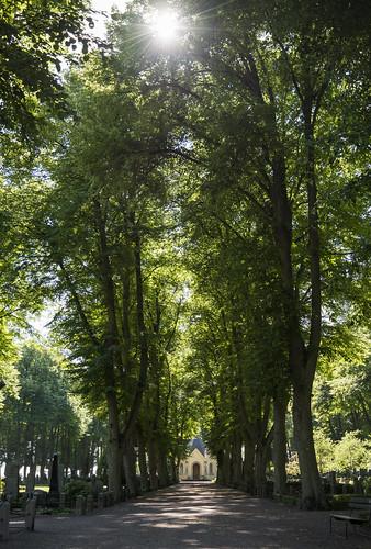 Cemetery near Kalmar Castle