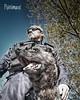 Équipe Cynophile de la Gendarmerie (Pixelimaux) Tags: gendarmerienationale cynophile dog chien k9unit bergerhollandais