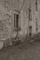 _MG_8087 (daniel.p.dezso) Tags: kiskunlacháza kiskunlacházi elhagyatott orosz szoviet laktanya abandoned russian soviet barrack urbex ruin reclaim military base militarybase