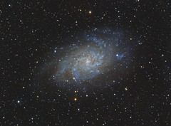 M33 Triangulum galaxy (__Aenima__) Tags: astronomy astrophotography astro autoguided asi120mc backyard ccd colour deepskyobject dso digital deepsky dark ed80 350d exposure eq6 filter finderguider finderscope frames galaxy guided galaxies imaging integration longexposure layered luminance mono messier mount m33 night optolong processed phd2 photoshop pixinsight qhyccd qhy163 qhy163m refractor space stars skywatcher stacking sky star telescope tracking triangulum uk zwo