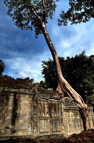 Preah Khan #3