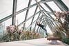 (francoiskmil) Tags: parkour backflip flip traceur architecture bridge santiago de chile model athlete sport jump photography urban street photoshoot