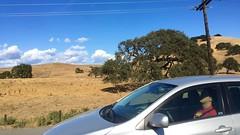 Motor dreams (Matt Jalbert) Tags: california highway101 sonomacounty freeway driving car automobile