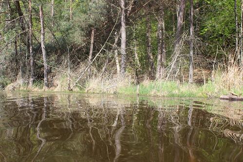 2015-05-10-09-17-53_Les Forts Trotters_à l'étang de Hanau