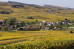 Bourgogne du sud - France (erik mumu) Tags: vin vigne vignoble culture paysage montagne roche vergisson solutré couleur bourgogne wine vine vineyard landscape mountain rock color france automne