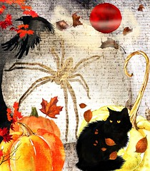 the dark season has begun V.2 (CatnessGrace) Tags: halloween collage beige brown orange blackcat cat spider pumpkins raven autumn leaves text photomanipulation digitalcollage art digitalart red yellow halloweenart creepy