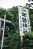 CAT-20170906-101353 (thinkcat) Tags: mitoshi ibarakiken 日本 jp