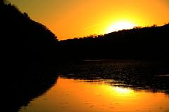 "* Good morning sunshine * (Darrell Colby "" You Call The Shots "") Tags: good morning sunshine sun londonontario ontario canada darrellcolby sunrise"