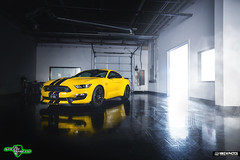 Speed Shield GT350 (Mike M. Photos) Tags: ford shelby gt350 mikemphotos speedshield sony a7rii a7 sonya7rii dallas clearbra wrap mustang