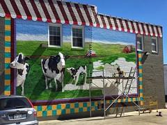 WAIT UNTIL THE COWS COME HOME (NC Cigany) Tags: color restaurant painter woman sanford nc farm 3d mural downtown art relief scaffold windows cows fun original talent artist ambitious paint car icecream hotdogs hamburgers frenchfries yarboroughs