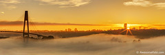 Foggy sunrise (james c. (vancouver bc)) Tags: riverside sunlight river autumn fall travel yellow orange sunrise canada waterfront morning skytrain bridge beauty scene dramatic newwestminster vancouver urban fraserriver britishcolumbia glow silhouette cloud dusk twilight sky panorama panoramic view landscape wideangle riverbank surrey apartment skyline sunray sunbeam fog mist tree hill cable tower highrise foggy misty