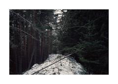 (Dennis Schnieber) Tags: 35mm kleinbild analog film rila bulgaria
