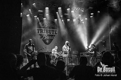 2017_10_27 Bosuil Battle of the tributebandsLIM_6357-Queens of the Stone Age Coverband Johan Horst-WEB