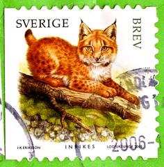 great stamp Sweden Brev inrikes Eurasian lynx (young) (Lynx lynx, Lodjur, Nordluchs, Eurasischer Luchs, lince europea, Lynx boréal, Eurázsiai hiúz, Europæisk los, Obični ris, Evrazijski ris, 歐亞猞猁) Scania frimärken Sverige postage Sveden frímerki Svíþjóð ط (stampolina, thx for sending stamps! :)) Tags: eurasianlynx lynxlynx lodjur nordluchs eurasischerluchs linceeuropea lynxboréal eurázsiaihiúz europæisklos običniris evrazijskiris 歐亞猞猁 lynx luchs jungtier young stamps stamp postzegel zegels postzegels timbre timbres postes postage briefmarken briefmarke sello sellos selos selo bolli bollo francobolli francobollo طوابع 邮票 razítka markica frimærker postimerkkejä γραμματόσημα בולים टिकटों bélyegek スタンプ 우표 antspaudai frimerker znaczki znamk pulları แสตมป์ markas postestimbres scania frímerki svíþjóð suède frimaerken スウェーデン ruotsi svédország