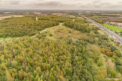 Bold Forest Park (Steve Samosa Photography) Tags: boldforestpark suttonmanor dream sthelens stevesamosaphotography woods woodlands trees autumn autumntrees forest park countrypark countryside england unitedkingdom gb dronecamera drones aerial aerialview