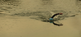 Swimming the last few meters.