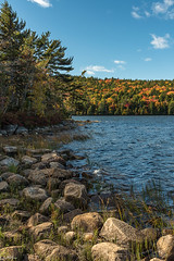 Echo Lake (59roadking - Jim Johnston) Tags: ifttt 500px autumn trees lake forest water rocks fall maine acadia echo