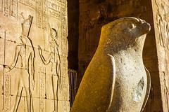 Horus (Michael Olea) Tags: 2015 travel egypt africa adventure northafrica aswan