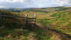 H (Daphne-8) Tags: fence stile landscape landschaft england grossbritannien peakdistrictnationalpark derbyshire stanageedge millstone view aussicht hills hügel grün green explore