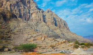 North of the UAE