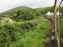 Gorgeous Green Thursday (pefkosmad) Tags: aberystwyth wales valeofrheidol steam railway narrowgauge countryside green vintage carriage locomotive scenery holiday vacation vacances ceredigion westwales greatlittletrainsofwales nostalgia uk heritage