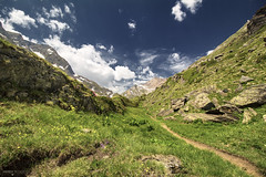 Bettelmatt Trail - Alta Val Formazza (Italy) (Andrea Moscato) Tags: andreamoscato italia alpi alps piemonte landscape paesaggio trail sentiero mountain montagna rock stones pietra grass green blue white cielo sky nuvole clouds shadow ombra luce day vivid nature natura natural naturale light flowers snow