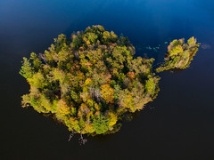 (Daniel000000) Tags: island lake water wisconsin wi trees fall autumn colors color colored landscape nature foliage countryside tree contrast green blue yellow light rib orange dji spark drone uav arial shot photo photography