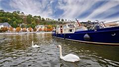 Namur - 3804 (YᗩSᗰIᘉᗴ HᗴᘉS +15 000 000 thx) Tags: cygne swan water namur hensyasmine hdr 3exp boat river meuse sky blue waterscape landscape 7dwf faune fauna