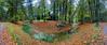 Bending (Hans van Bockel) Tags: bladeren bloemenenplanten bomen bos d7200 gaia herfst hotel huis landschap natuur natuurgebied nikon paddenstoelen planten rande schapenzandweg pano panorama lightroom photoshop luminar nik statief vanguard