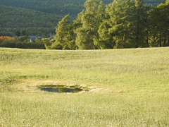 Cairngorms National Park (BSCG (Badenoch and Strathspey Conservation Group)) Tags: acm landscape field arable pool