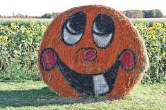 Halloween Hay Bale (Craigford) Tags: stratford pei canada hay bales halloween decorations fall autumn