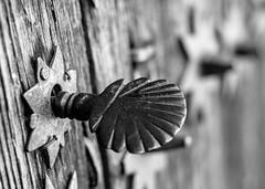 Daily Art   ///   Arte Cotidiano (Walimai.photo) Tags: black white blanco negro byn branco preto door puerta blanc noir nikon d7000 helios 44m4 58mm robledillo de gata cáceres extremadura spain españa detail detalle wood madera metal