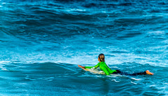 _DSC2583.jpg (David Hamments) Tags: surfbeach terrigal child wave surfing surfboard surfer waiting junior