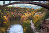 Lower Falls, Rochester, NY (ransomtech) Tags: rochester fall lowerfalls waterfall landscape leaves bridge geneseeriver river