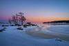 Morning flyby (Jyrki Salmi) Tags: jyrki salmi kotka finland winter morning ice snow birds
