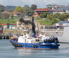 Korimul (~ydoc~) Tags: tug tugboat tasports devonport tasmania australia