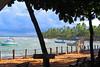 Projeto tamar (Marinalobows) Tags: praiadoforte bahia projetotamar
