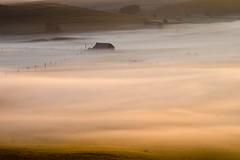 Dans la brume, Nasbinals, Lozère (lyli12) Tags: brume aubrac lozère paysage landscape languedocroussillon mist leverdesoleil nature france nikon d7000