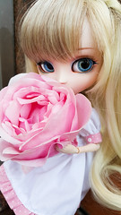 Roses (Usatii~) Tags: roses rosas lachesis pullipalicesteampunk